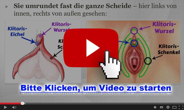 Banner - Weibliche Anatomie_02